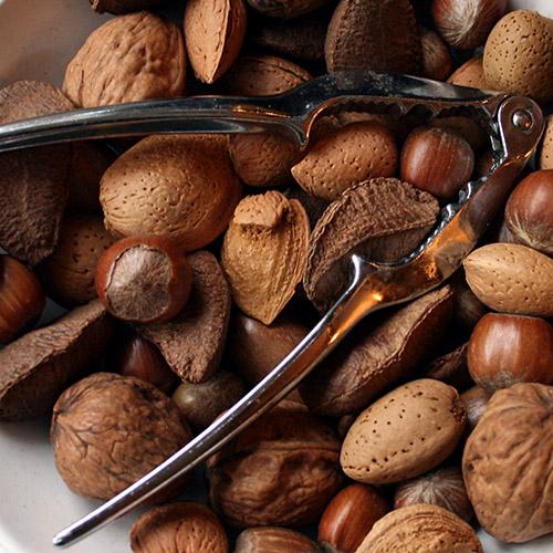bita choklad av en nöt är svårt