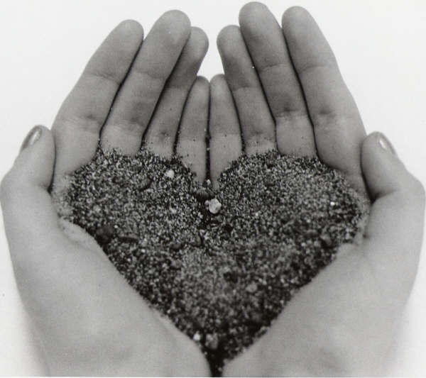 heart-in-my-hands-1183745
