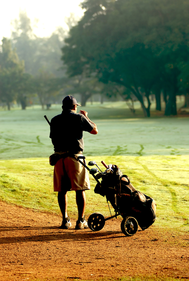 golfers-in-the-sunlight-1171391-639x951